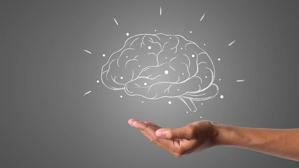 comment programmer son cerveau pour maigrir.