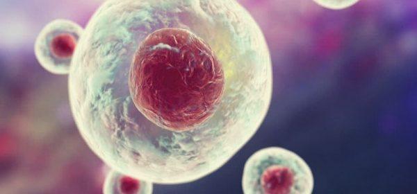 biotechnologie définition