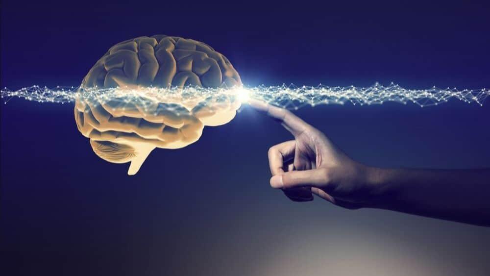 Définition générale des Neurosciences