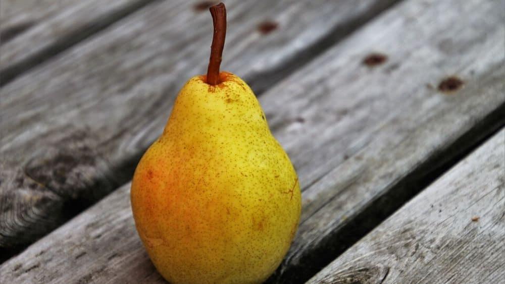meilleurs fruits d'automne