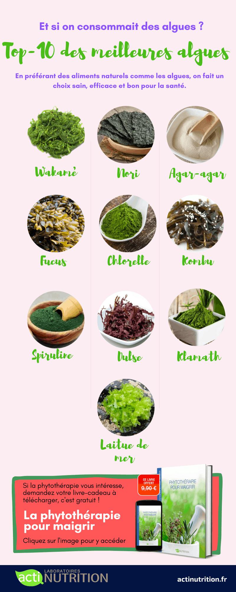 L'infographie du top 10 des meilleures algues pour la santé