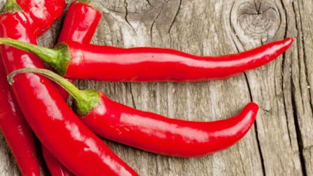 Poivre de Cayenne épice bon pour la santé.