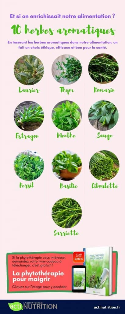 Infographie herbes aromatiques