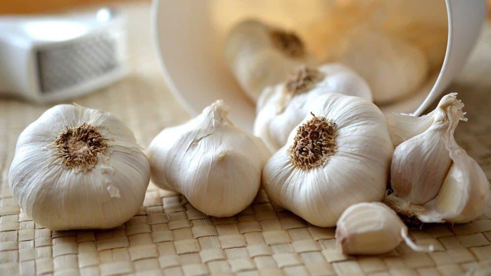 ail - fruits et légumes immunité