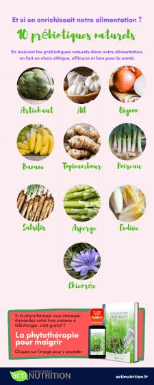 Infographie prébiotiques naturels
