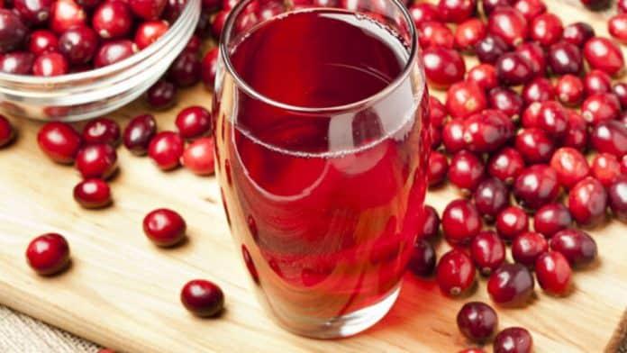 bienfaits de la canneberge (cranberry)