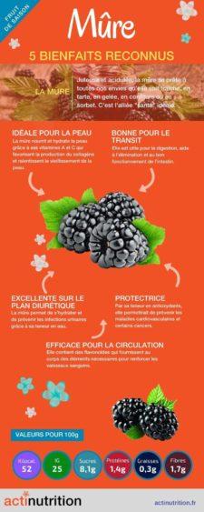 Infographie bienfaits de la mûre