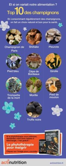 bienfaits des champignons comestibles