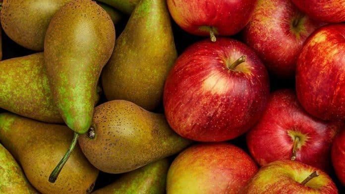 pommes et poires, les fruits d'octobre
